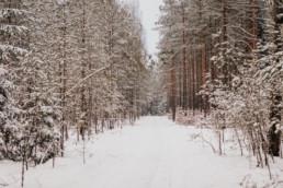 Zimowa sesja narzeczeńska na Mazurach 1